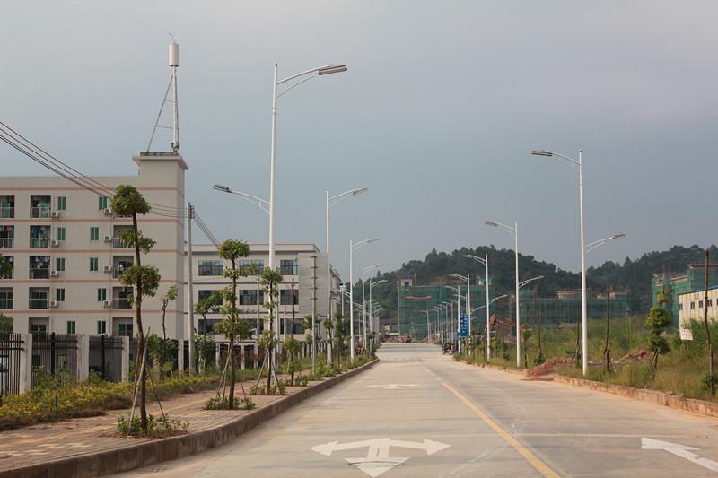 太平开发区二期路灯工程2